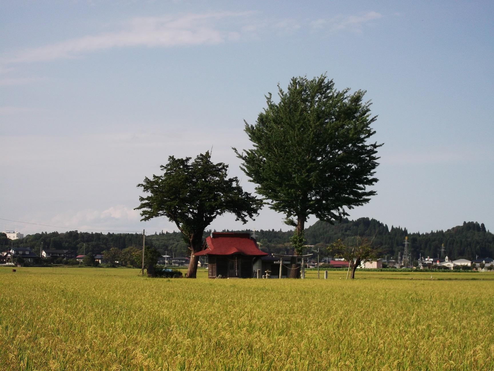 二子の山と蔵前神社