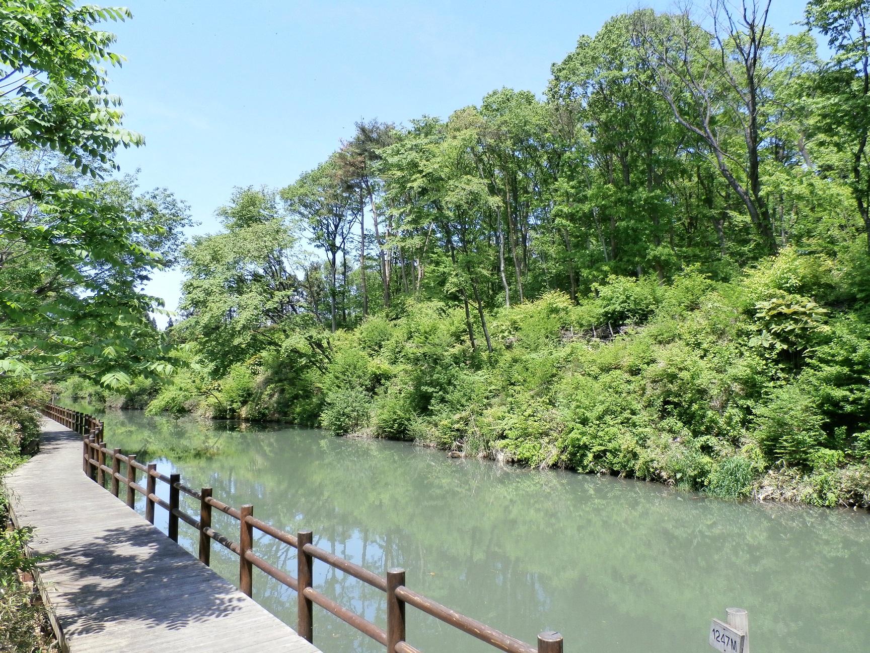 新堰水辺公園