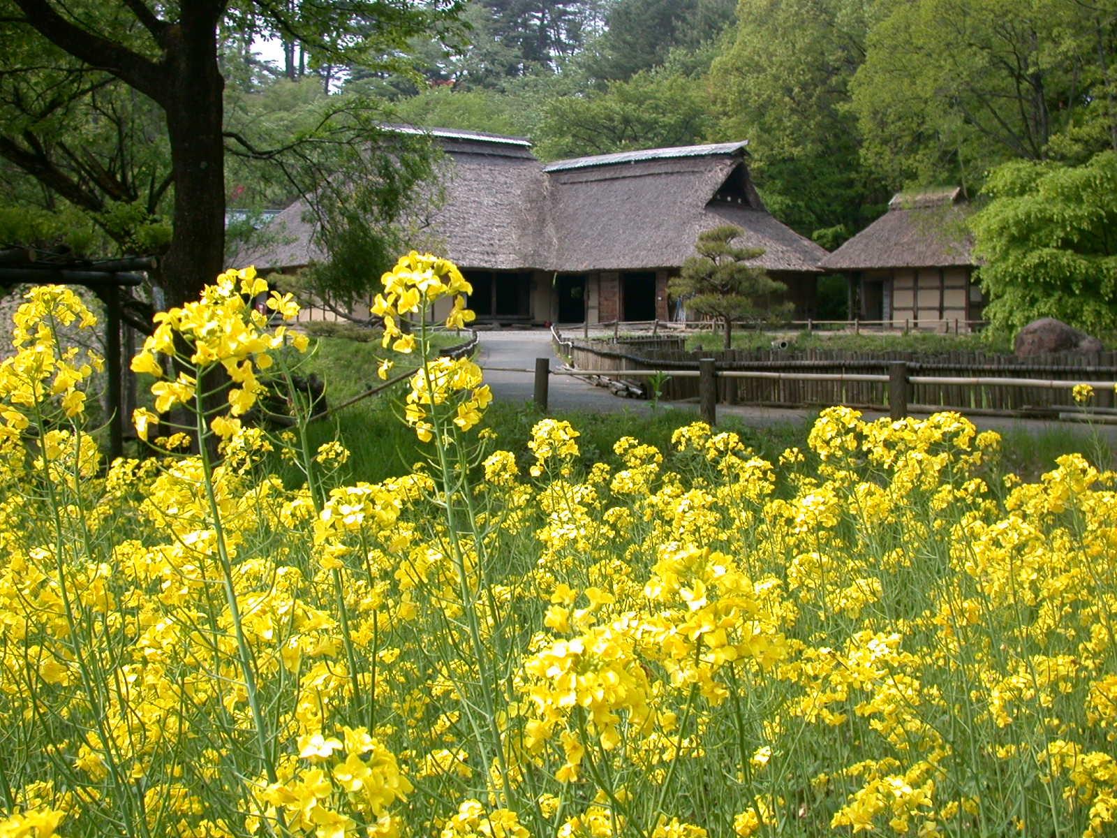 春の民俗村